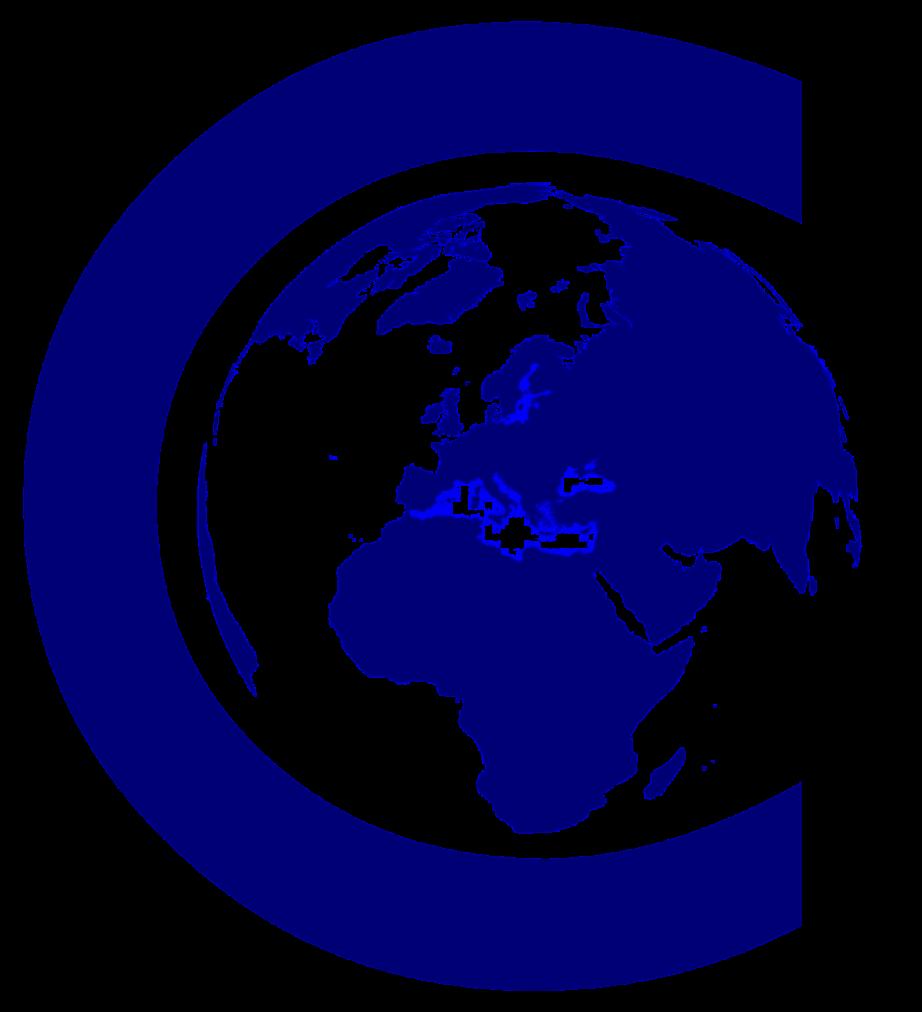 Logo Nicola Casalini